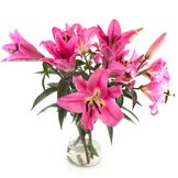 Presentes & Flores